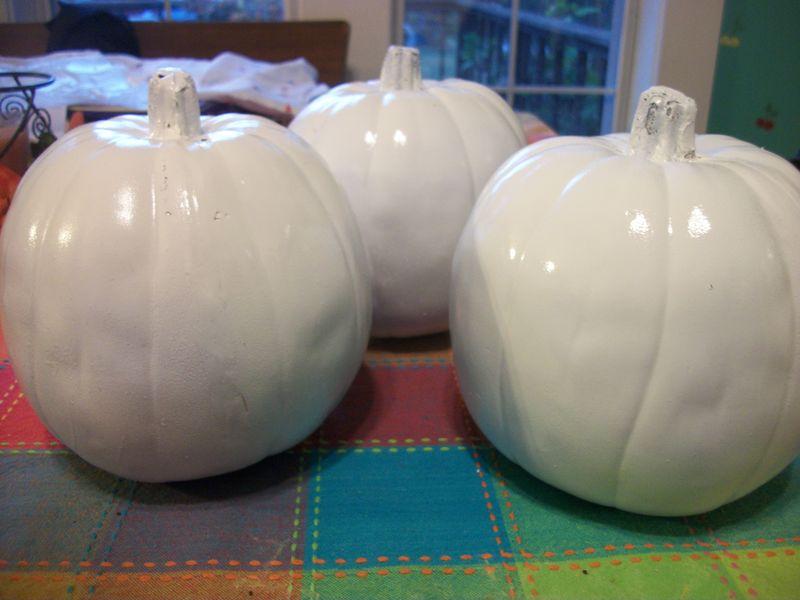 Pumpkin 015