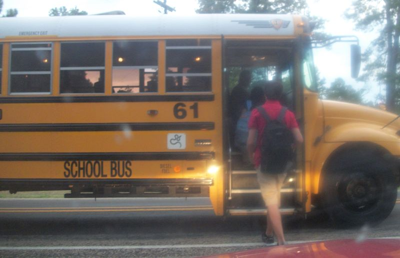 Firstdaybus